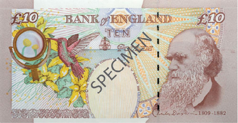 Старая купюра в £10 с портретом Чарльза Дарвина